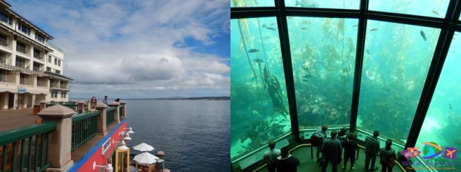 Baía de Monterey/Aquário de Monterey
