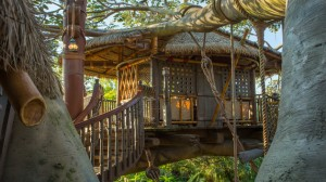 swiss-family-treehouse-00